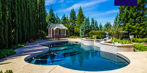 Great ideas for choosing the best pool shape for your garden
